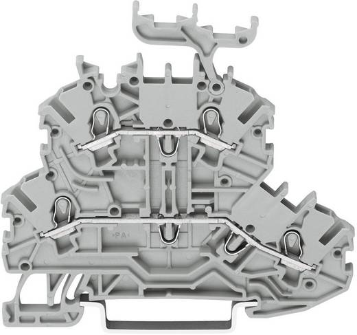 Doppelstock-Durchgangsklemme 3.50 mm Zugfeder Belegung: L, L Grau WAGO 2000-2231 1 St.