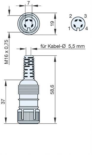DIN-Rundsteckverbinder Buchse, gerade Polzahl: 4 Grau Hirschmann MAK 4100 1 St.