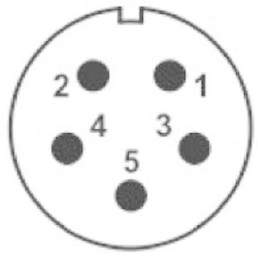 IP68-Steckverbinder Serie SP2111 / S 5C II Pole: 5C In-Line-Buchse 15 A SP2111 / S 5C II Weipu 1 St.