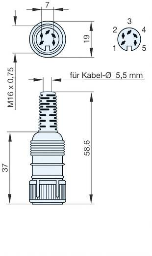 DIN-Rundsteckverbinder Buchse, gerade Polzahl: 5 Grau Hirschmann MAK 5100 1 St.