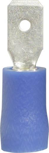 Flachstecker Steckbreite: 4.8 mm Steckdicke: 0.8 mm 180 ° Teilisoliert Blau Vogt Verbindungstechnik 393405S 1 St.