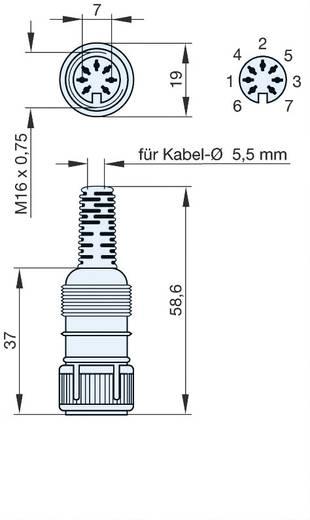 DIN-Rundsteckverbinder Buchse, gerade Polzahl: 7 Grau Hirschmann MAK 7100S 1 St.
