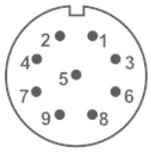 IP68-Steckverbinder Serie SP2113 / S 9 Pole: 9 Flanschbuchse zur Frontmontage 5 A SP2113 / S 9 Weipu 1 St.