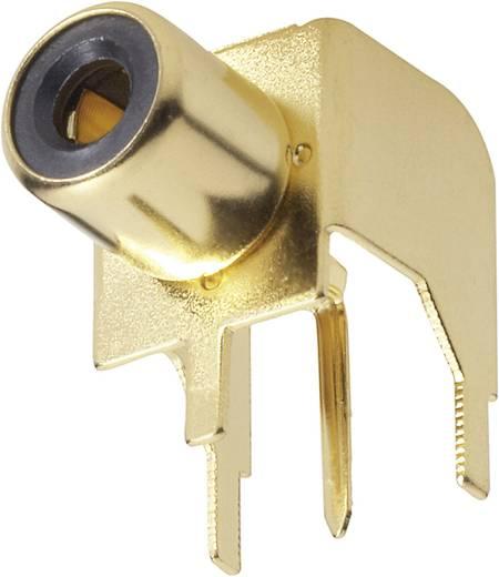 Cinch-Steckverbinder Buchse, Einbau horizontal Polzahl: 2 Gold BKL Electronic 1103045 1 St.