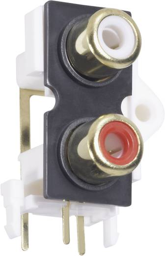 Cinch-Steckverbinder Buchse, Einbau vertikal Polzahl: 2 Gold, Rot, Weiß BKL Electronic 072384 1 St.