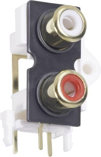 Cinch-Steckverbinder Buchse, Einbau vertikal Polzahl: 2 Gold, Rot, Weiß BKL Electronic 72384 1 St.