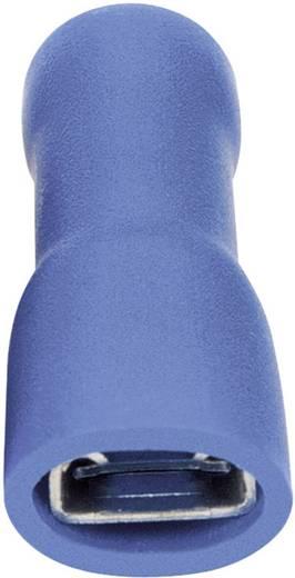 Flachsteckhülse Steckbreite: 6.3 mm Steckdicke: 0.8 mm 180 ° Vollisoliert Blau Vogt Verbindungstechnik 3945 1 St.