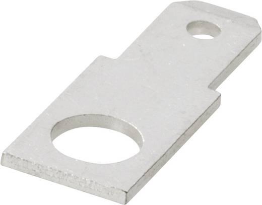 Steckzunge Steckbreite: 2.8 mm Steckdicke: 0.8 mm 180 ° Unisoliert Metall Vogt Verbindungstechnik 37701.67 1 St.