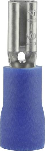 Flachsteckhülse Steckbreite: 2.8 mm Steckdicke: 0.5 mm 180 ° Teilisoliert Blau Vogt Verbindungstechnik 389905 1 St.