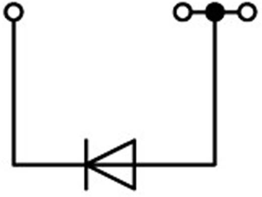 Diodenklemme 4.20 mm Zugfeder Belegung: L Grau WAGO 2001-1311/1000-411 1 St.