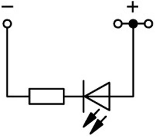 LED-Klemme 5.20 mm Zugfeder Belegung: L Grau WAGO 2002-1321/1000-413 1 St.