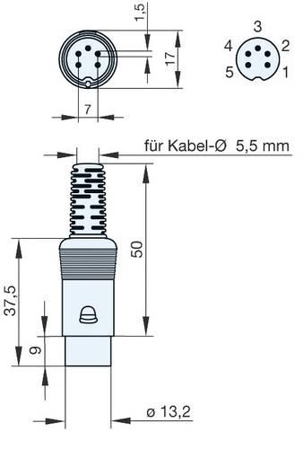 DIN-Rundsteckverbinder Stecker, gerade Polzahl: 5 Grau Hirschmann MAS 50 1 St.