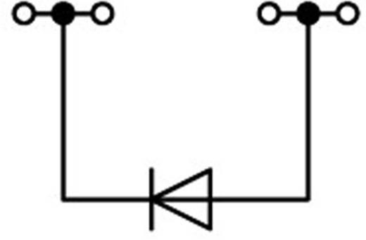 Diodenklemme 5.20 mm Zugfeder Belegung: L Grau WAGO 2002-1411/1000-411 1 St.