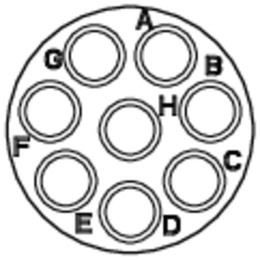 Gerätedose - Serie RT360™ Vierkantflansch Nennstrom (Details): 13 A Pole: 8 RT0012-8SNH Amphenol