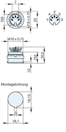 DIN-Rundsteckverbinder Buchse, Einbau vertikal Polzahl: 5 Grau Hirschmann MAB 5100 S 1 St.