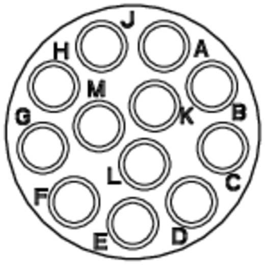Gerätedose - Serie RT360™ Vierkantflansch Nennstrom (Details): 13 A Pole: 12 RT0014-12SNH Amphenol