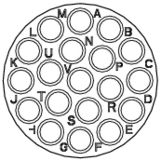 Kabeldose - Serie RT360™ Nennstrom (Details): 13 A Pole: 19 RT0616-19SNH Amphenol