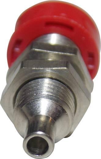 Laborbuchse Buchse, Einbau vertikal Stift-Ø: 4 mm Rot Schützinger BU 403 rt 1 St.