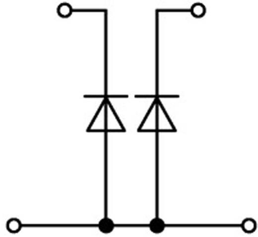 Doppelstock-Diodenklemme 5.20 mm Zugfeder Belegung: L Grau WAGO 2002-2213/1000-487 1 St.