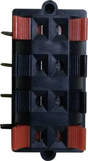 Lautsprecher-Steckverbinder Buchse, Einbau horizontal Polzahl: 8 Schwarz 1 St.