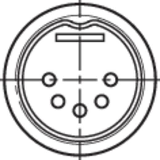 DIN-Rundsteckverbinder Stecker, gerade Polzahl: 5 Schwarz Rean NYS322 1 St.