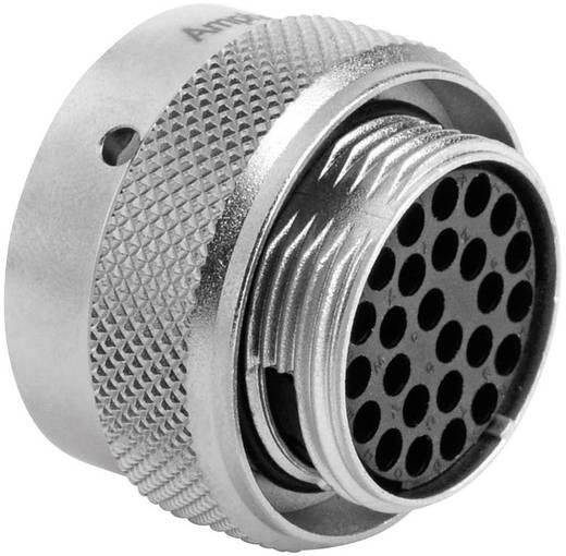Kabeldose - Serie RT360™ Nennstrom: 5 A Pole: 26 RT0616-26SNH Amphenol