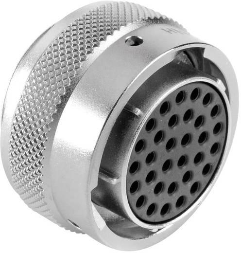 Kabeldose - Serie RT360™ Nennstrom: 5 A Pole: 32 RT0618-32SNH Amphenol