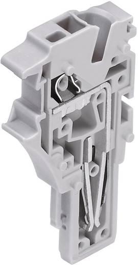 1-Leiter Endmodul Serie 2022 0.25 - 2.5 mm² Grau WAGO 1 St.
