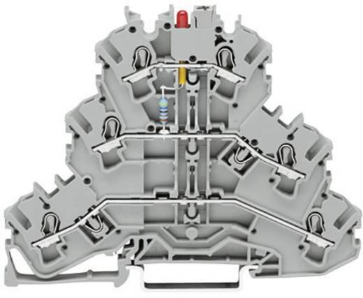 Dreistock-LED-Klemme 5.20 mm Zugfeder Belegung: L Grau WAGO 2002-3221/1000-434 1 St.