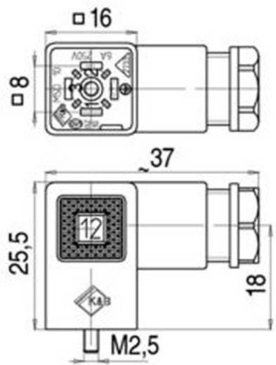 Magnetventilsteckverbinder Bauform C Serie 230 Schwarz 43-1900-000-03 Pole:2+PE Binder Inhalt: 1 St.