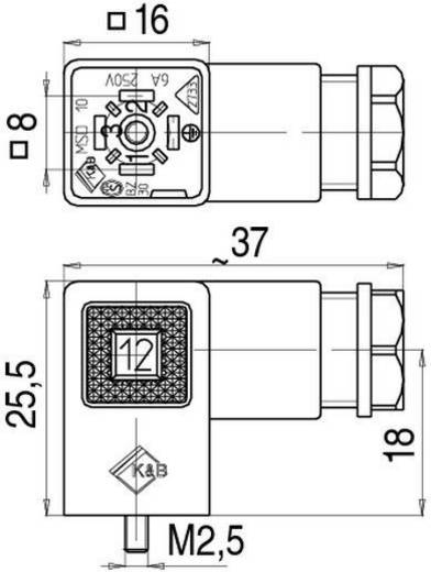Magnetventilsteckverbinder Bauform C Serie 230 Schwarz 43-1902-000-04 Pole:3+PE Binder Inhalt: 1 St.
