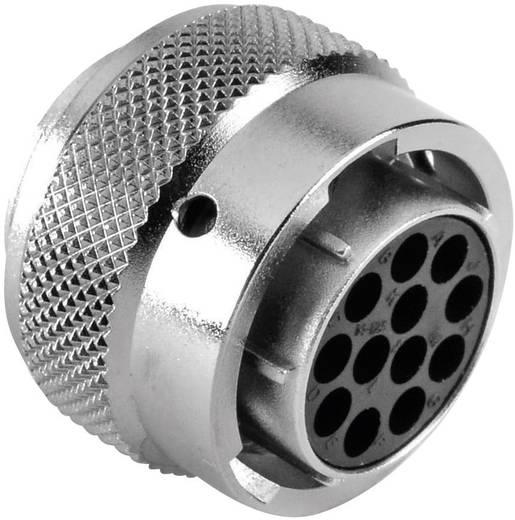 Kabeldose - Serie RT360™ Nennstrom (Details): 13 A Pole: 12 RT0614-12SNH Amphenol