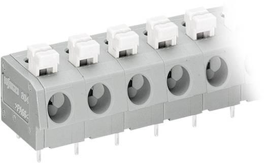 Federkraftklemmblock 2.50 mm² Polzahl 10 804-310 WAGO Grau, Weiß 1 St.