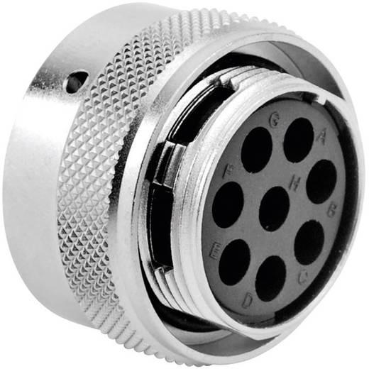 Kabeldose - Serie RT360™ Nennstrom (Details): 13 A / 5 A Pole: 8 RT0618-8SNH Amphenol
