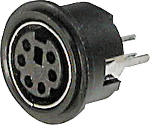 Miniatur-DIN-Rundsteckverbinder Buchse, Einbau vertikal Polzahl: 8 Schwarz ASSMANN WSW A-DIO-TOP/08 1 St.