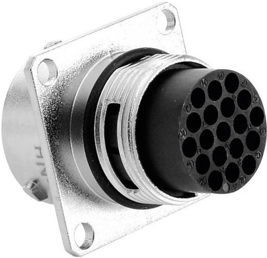 Gerätestecker - Serie RT360™ Vierkantflansch Nennstrom (Details): 5 A Pole: 19 RT0014-19PNH Amphenol