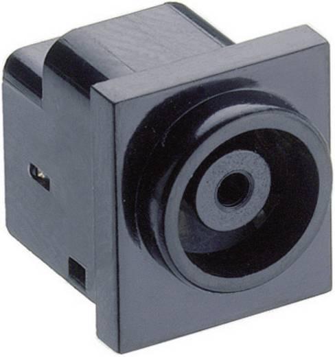 Niedervolt-Steckverbinder Schaltkontakt-Art: Öffner Buchse, Einbau horizontal 7 mm 4 mm Lumberg 1613 11 1 St.