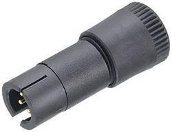 Fiche de Câble 4 Br. 719-09-9767-70-04 Binder 719-09-9767-70-04