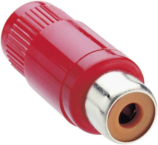 Cinch-Steckverbinder Buchse, gerade Polzahl: 2 Rot Lumberg KTO 1 1 St.