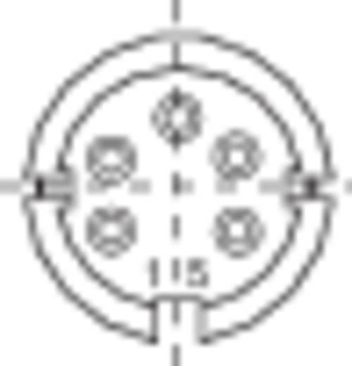 Miniatur-Rundsteckverbinder Serie 581 Pole: 5 DIN Kabelstecker 6 A 99-2013-00-05 Binder 1 St.