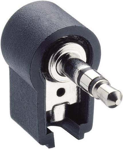 Klinken-Steckverbinder 3.5 mm Stecker, gewinkelt Polzahl: 3 Stereo Schwarz Lumberg WKLS 40 1 St.