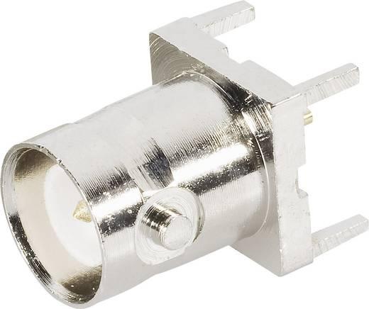 BNC-Reverse-Steckverbinder Buchse, Einbau vertikal 50 Ω BKL Electronic 0419614 1 St.