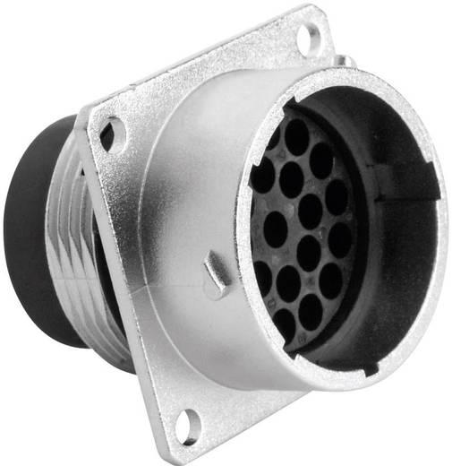 Gerätestecker - Serie RT360™ Vierkantflansch Nennstrom (Details): 13 A Pole: 23 RT0018-23PNH Amphenol