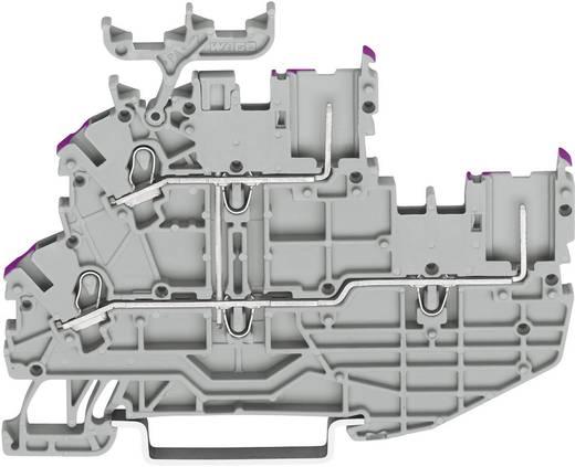 Basisklemme 3.50 mm Zugfeder Belegung: L Grau WAGO 2020-2238 1 St.