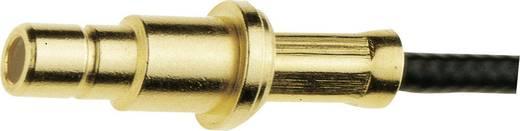 SMB-Steckverbinder Stecker, gerade 50 Ω IMS 11.1310.021 1 St.