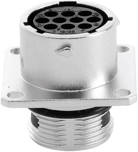 Gerätedose - Serie RT360™ Vierkantflansch Nennstrom (Details): 5 A Pole: 10 RT0012-10SNH Amphenol