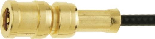 SMB-Steckverbinder Buchse, gerade 50 Ω IMS 11.2310.021 1 St.