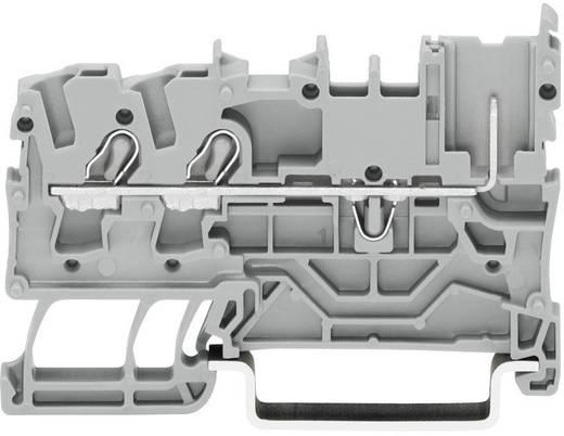 Basisklemme 5.20 mm Zugfeder Belegung: L Grau WAGO 2022-1301 1 St.
