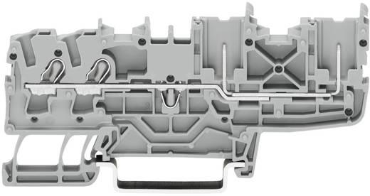 Basisklemme 5.20 mm Zugfeder Belegung: PE Grün-Gelb WAGO 2022-1407 1 St.