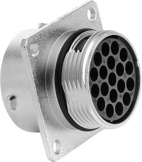 Gerätedose - Serie RT360™ Vierkantflansch Nennstrom (Details): 13 A Pole: 19 RT0016-19SNH Amphenol